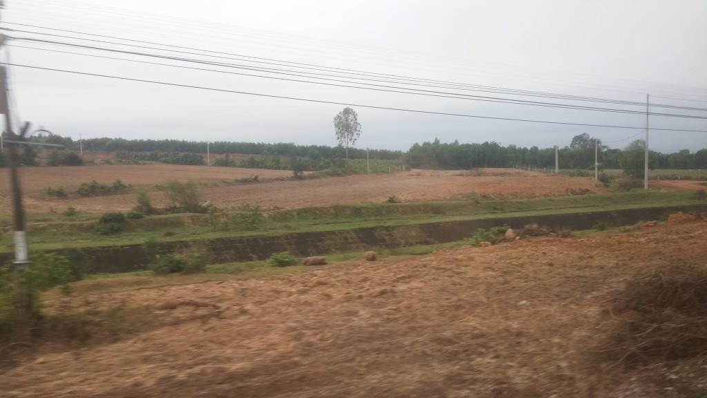 billeder af landet i vietnam, rismarker