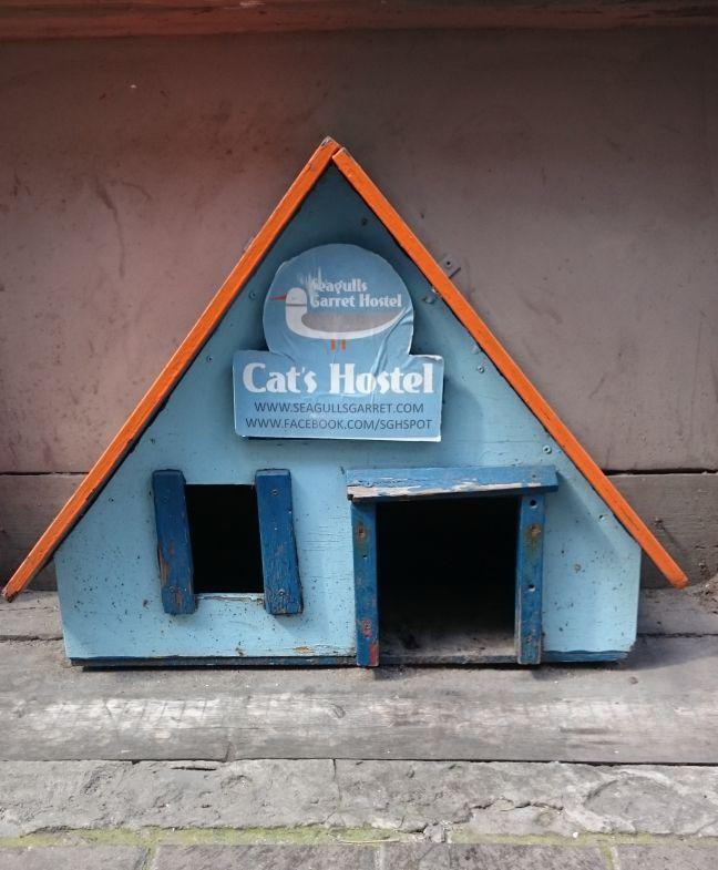 Riga hostel_web